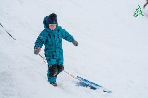 Кто больше всего рад такому количеству снега?
